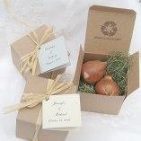 bulbs_tulip_brown_350-350